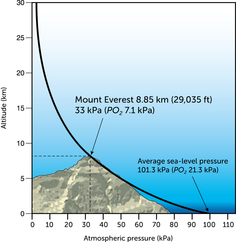 PowerSchool Learning Th Grade Science Air Pressure And Altitude - Above sea level calculator