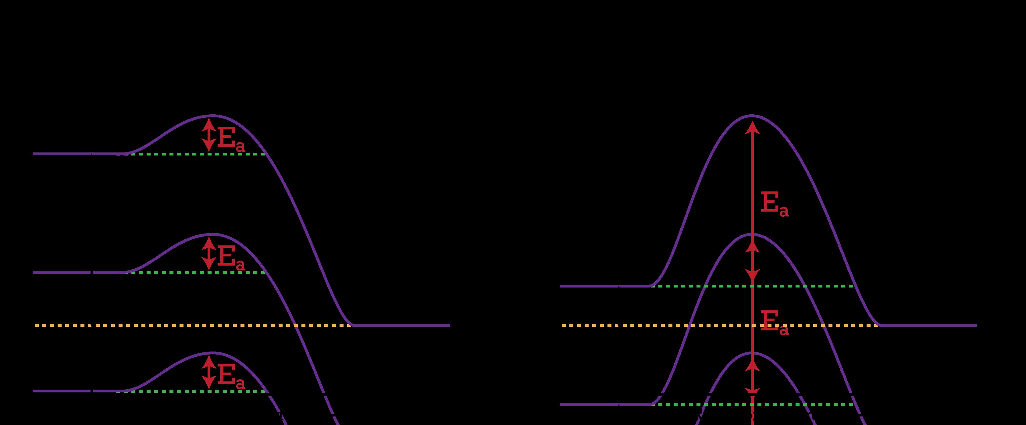 Potential Energy Diagrams Ck 12 Foundation