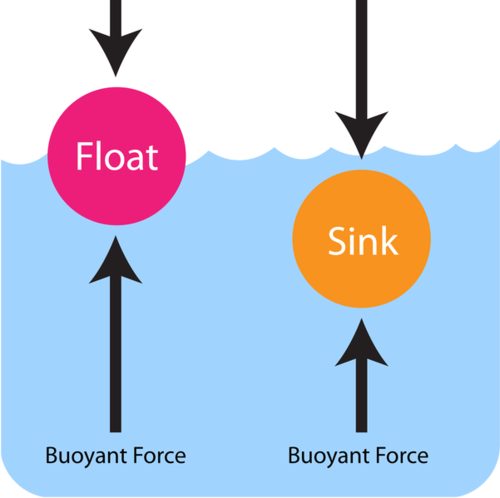 Density and Buoyant Force
