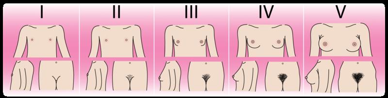 Stimulate Male Nipples 24